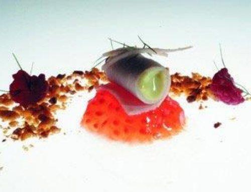 Ensalada de Pavo y Aguacate con Frutos Rojos y Polvo de Kikos